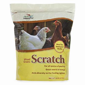 Manna Pro Ultimate Scratch Grains for Chickens   Rich in