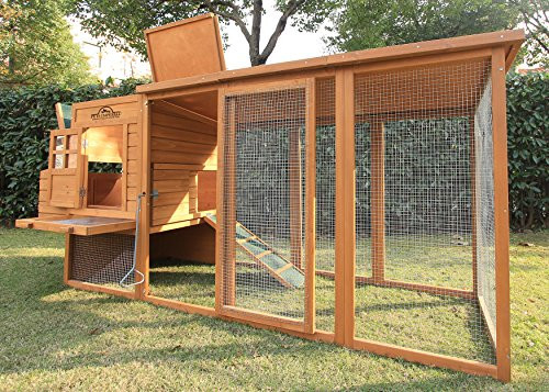 Pets Imperial Arlington Chicken Coop with Extra Long Run